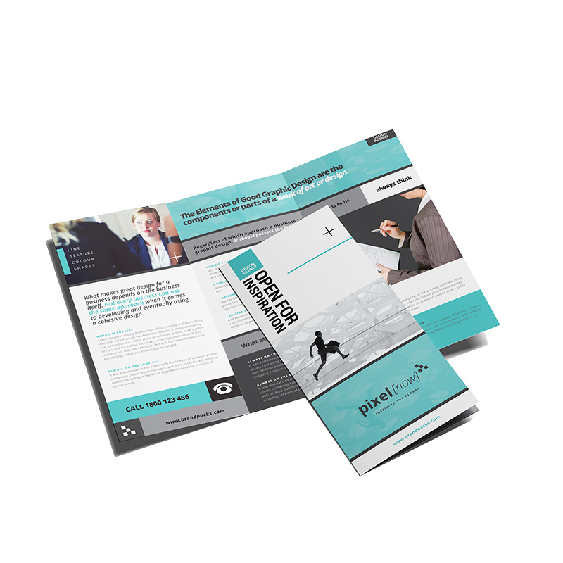 brochure printing in Tampa